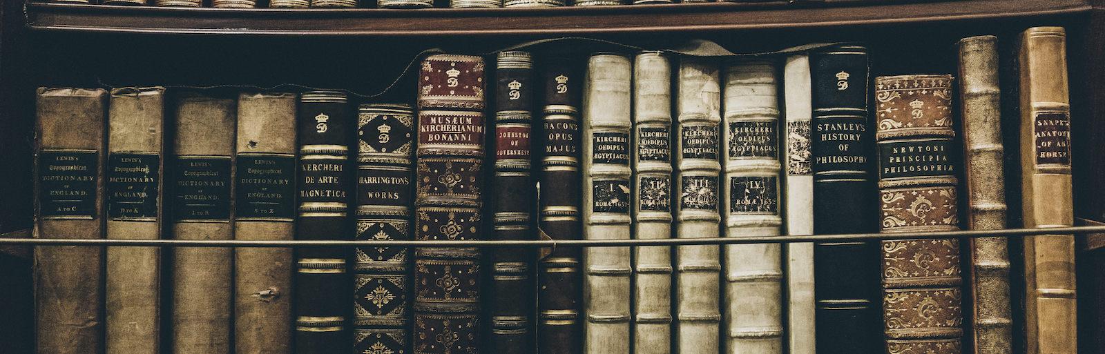 A photo by Thomas Kelley. unsplash.com/photos/hHL08lF7Ikc