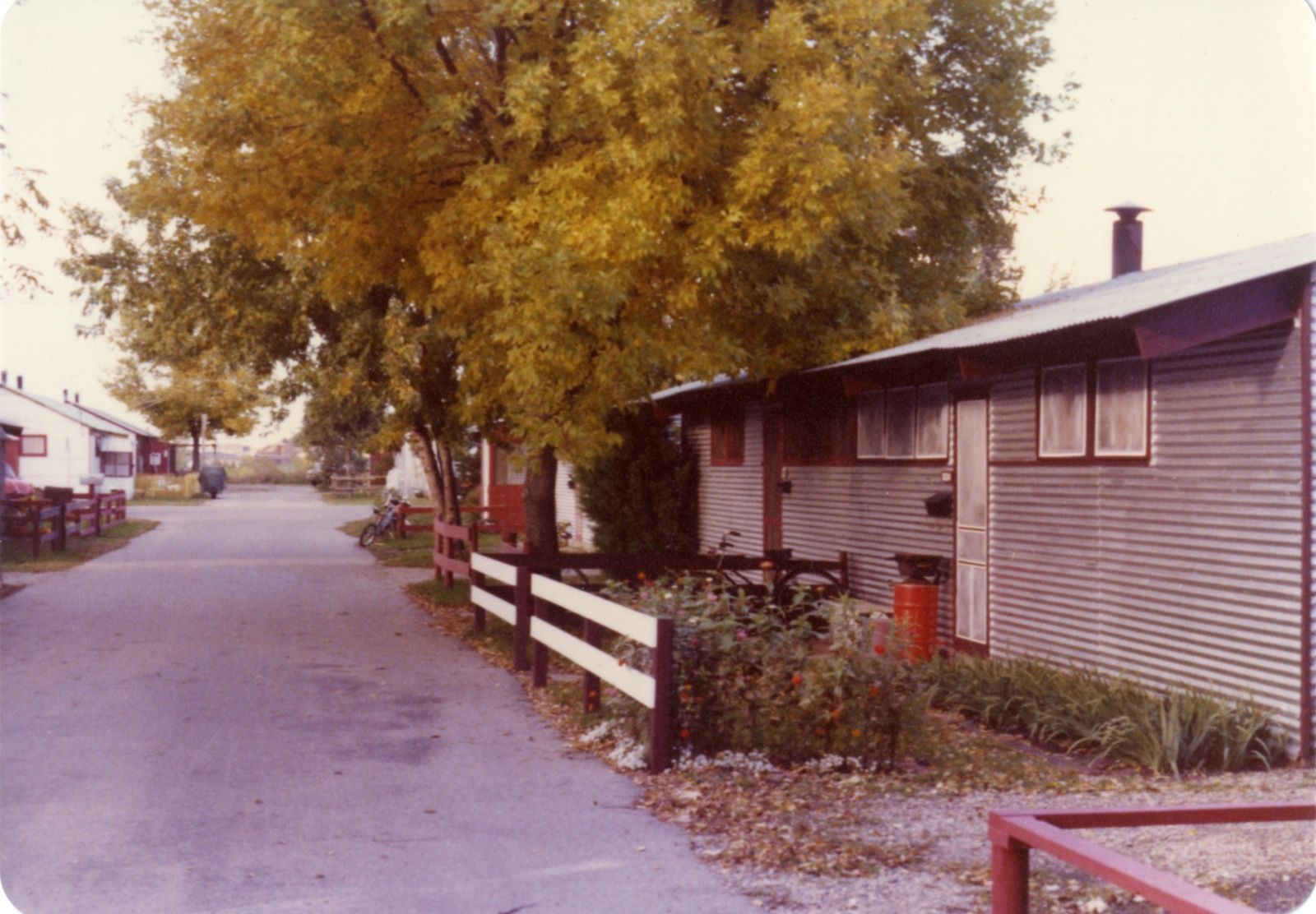 824 Pammel Court, home of Janet Jepeway. Fall 1978.