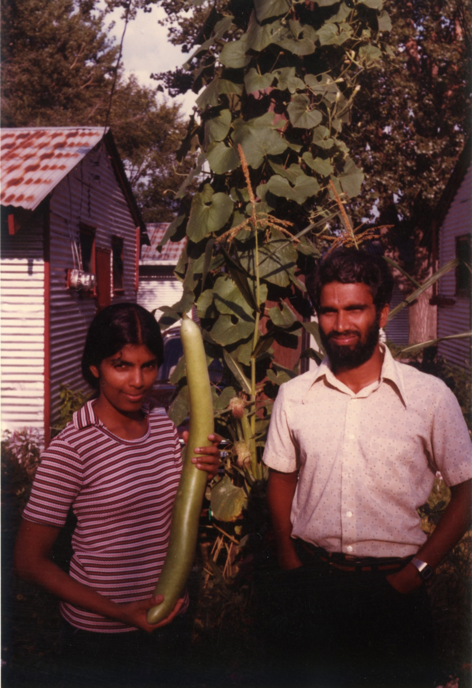 Satya and Vijay with vine at home of Janet Jepeway in Pammel Court. August 1981.