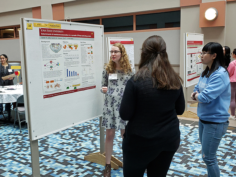 Sarah Zelle explains her research at a conference
