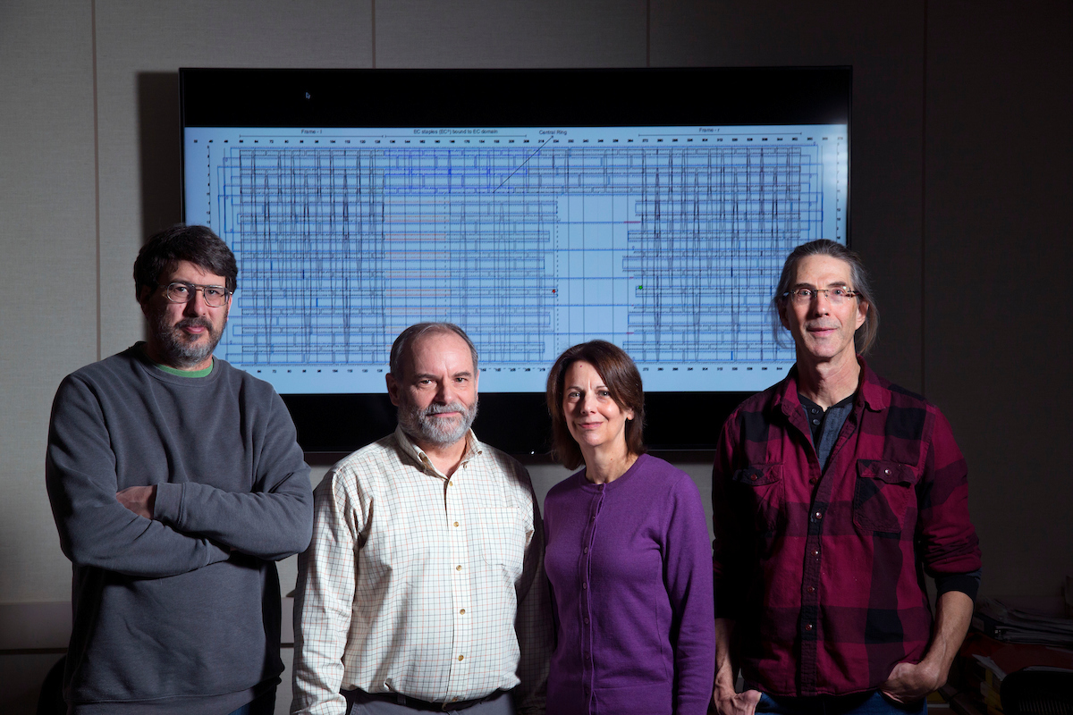 From left, Jim Lathrop, Jack Lutz, Robyn Lutz and Eric Henderson in the Iowa State University Laboratory for Molecular Programming. (Christopher Gannon/Iowa State University)