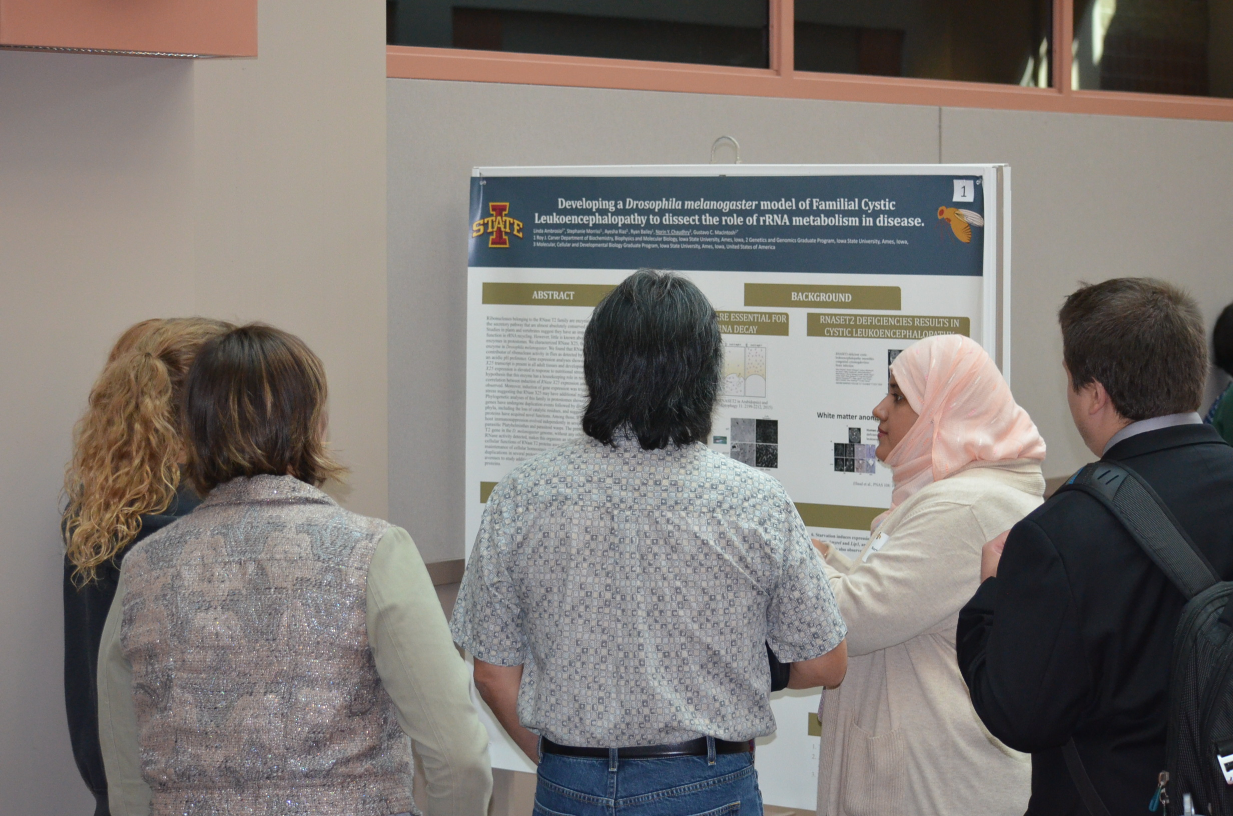 Norin Chaudhry, a graduate student in the interdepartmental Molecular, Cellular & Developmental Biology program, presents a poster on her research at Neuroscience Research Day.