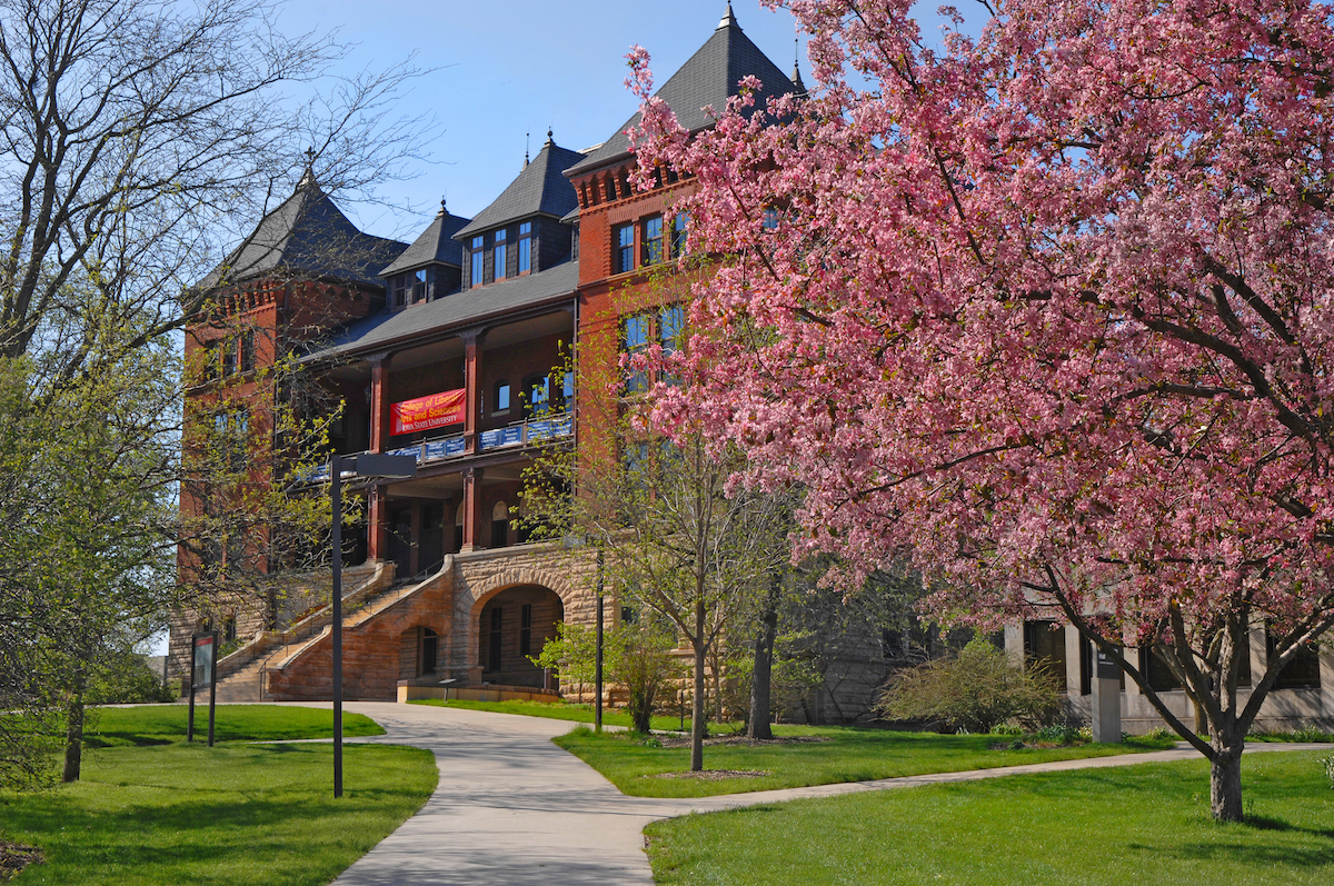 Catt Hall in the spring, with pink blossoms on tree