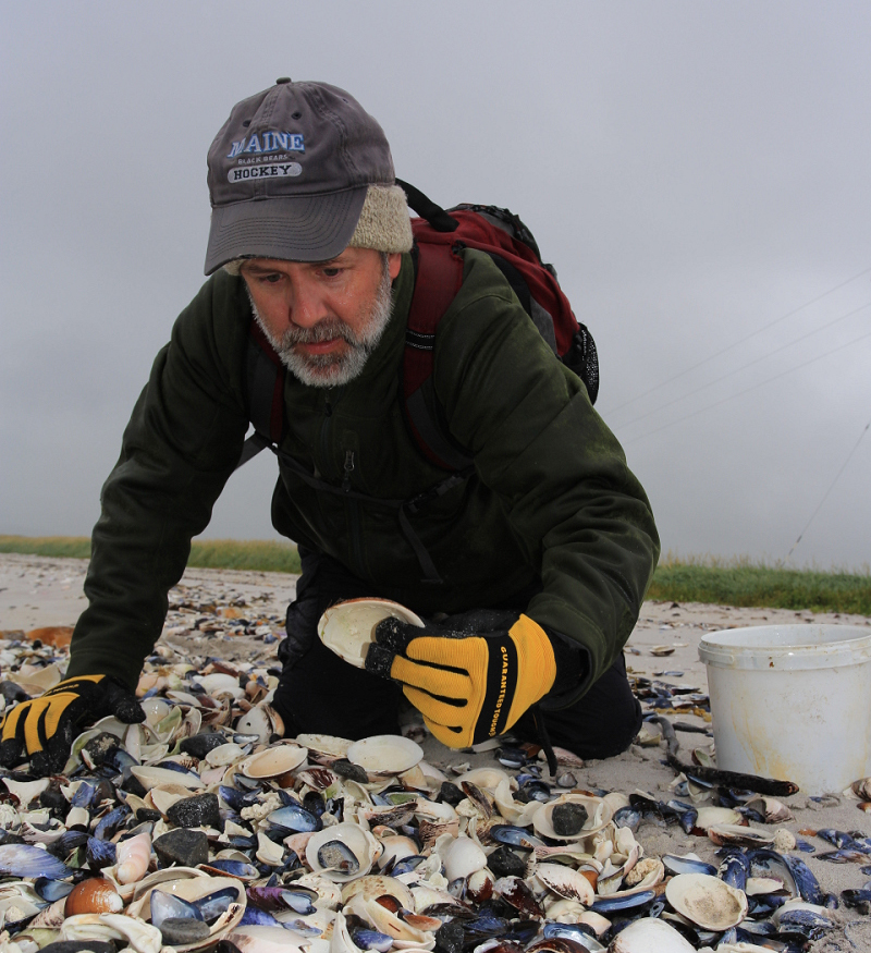 Alan Wanamaker, recipient of the Trapp Innovation Award, interprets ocean climate and global change through studying the geochemical and growth histories from clams, corals, and other species.