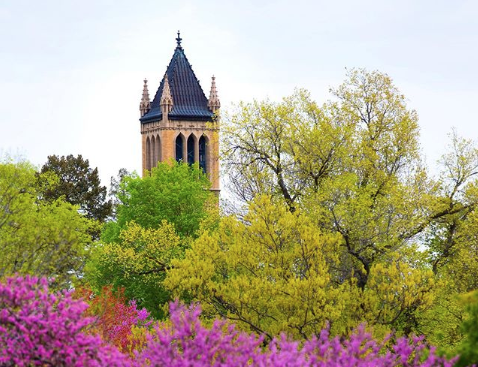 Iowa State University campanile with trees in front