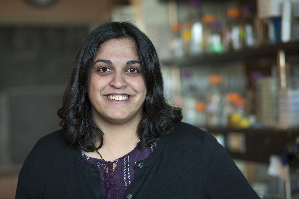 Dipali Sashital receives 2019 Camille Dreyfys Teacher-Scholar Award.