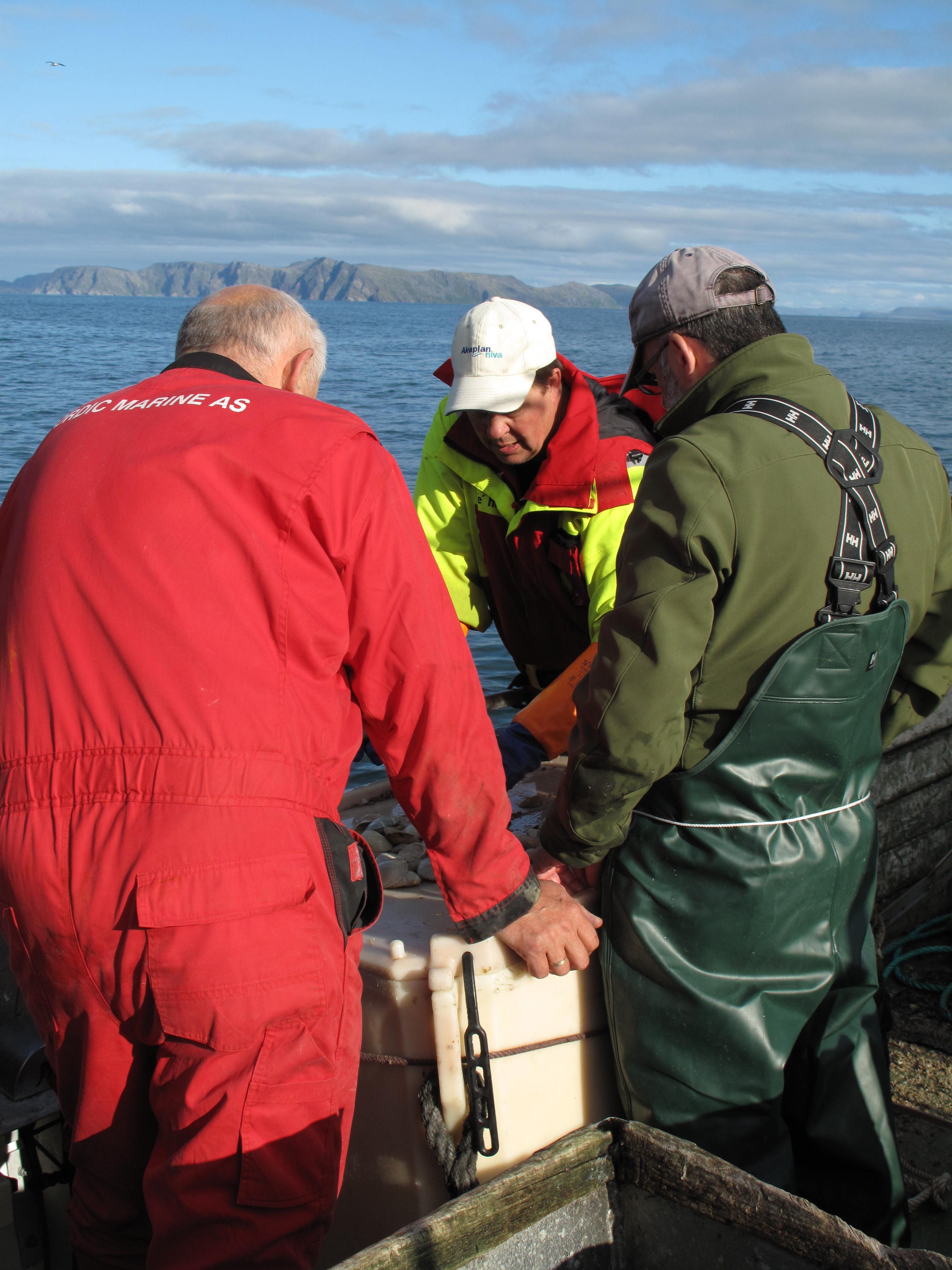 Al, Michael, and Thorleif sort through our meager catch