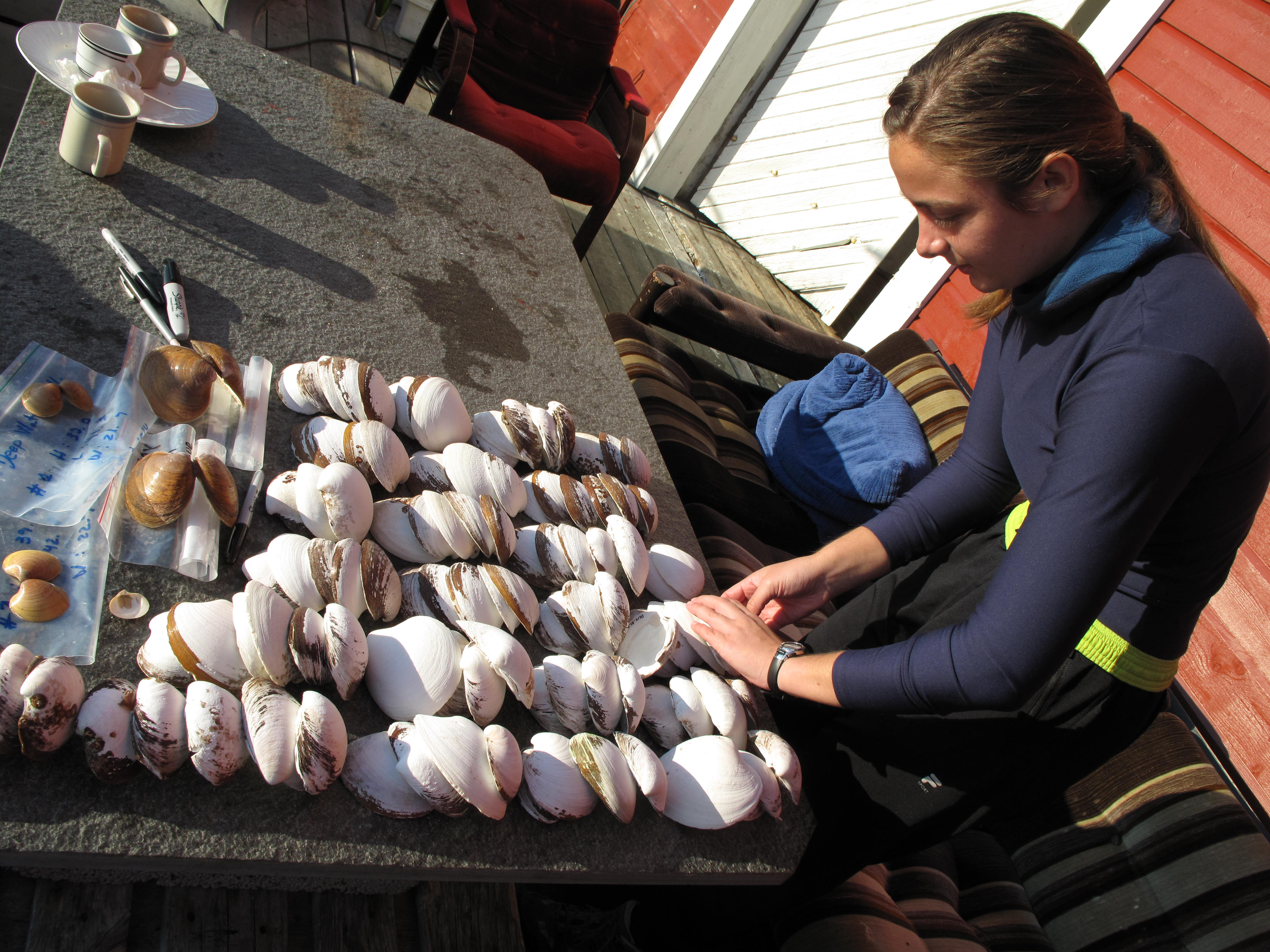 Aubrey sorts and labels beach-collected shells.