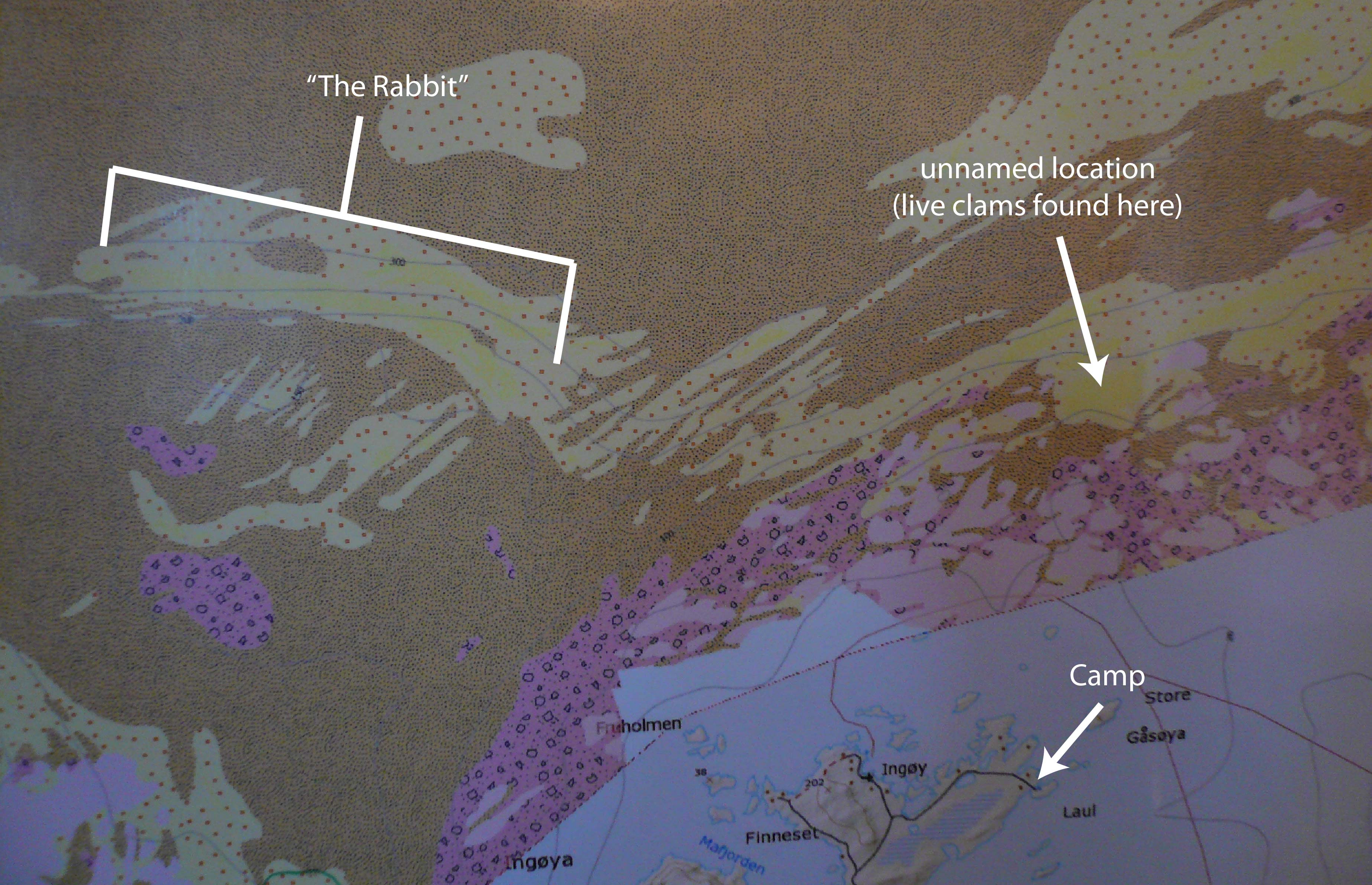 Sediment map. Yellow areas are sandy bottom.